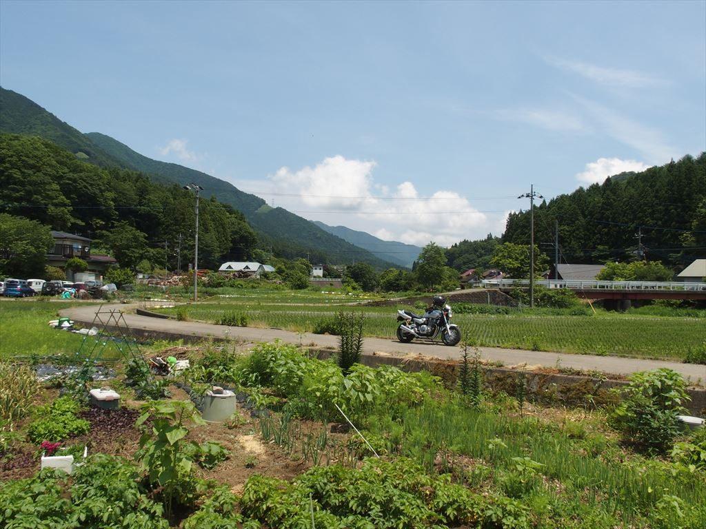 道志みち付近の田畑の風景