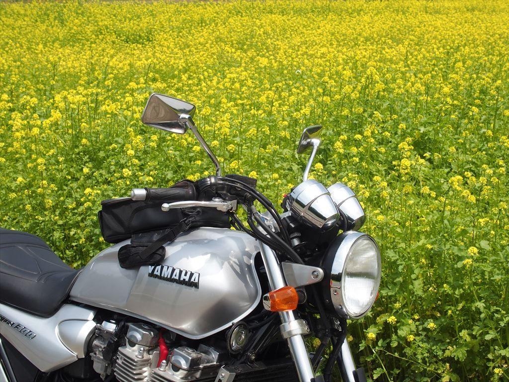 山中湖花の都公園の花とバイク