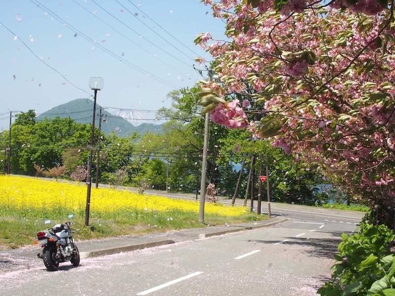 洞爺湖のほとりの道の風景