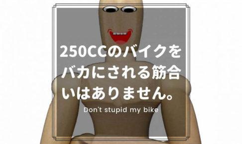 250ccのバイクをバカにされる筋合いはありません